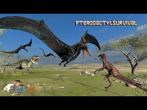 Pterodactyl Survival Simulator - Gameplay Android