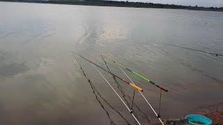 câu cá review combo câu đài rẻ bền để câu cá khủng cực tốt
