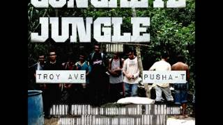 Troy Ave Ft. Pusha T Concrete Jungle 2012 December Dirty CDQ NO DJ.mp3