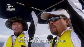 성난 물고기 - 바다의 스프린터, 참치_#002
