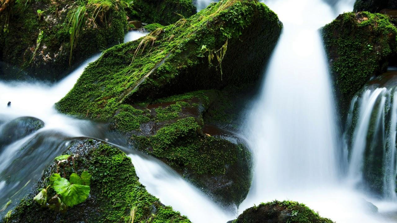 Suara Air Sungai Mengalir - YouTube