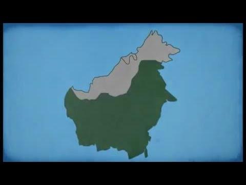 Kalimantan Dulu, Kini, Dan Nanti