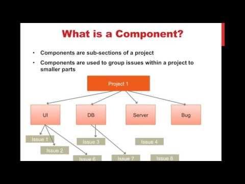 JIRA Basic Concepts