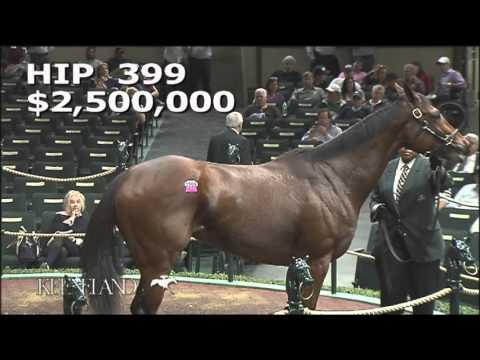 2015 November Breeding Stock Sale: Hip 399 - PHOTO CALL (IRE)