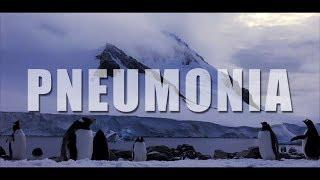 "Björk - ""Pneumonia"" (Lyrics)"