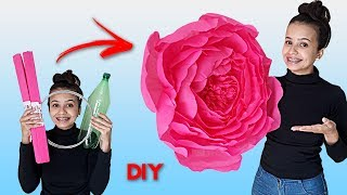 DIY Como Fazer Flor de Papel Crepom e Roseta de Cartolina