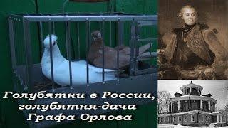 Голубятни в России, голуби турманы, голубятня-дача графа Орлова