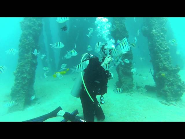 Scuba Diving in Crash Boat, Puerto Rico 2014