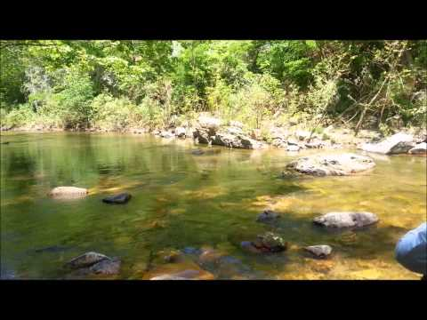 Dry Fly Terrestrial Action 2013 Jeff Wilkins Fly Fishing