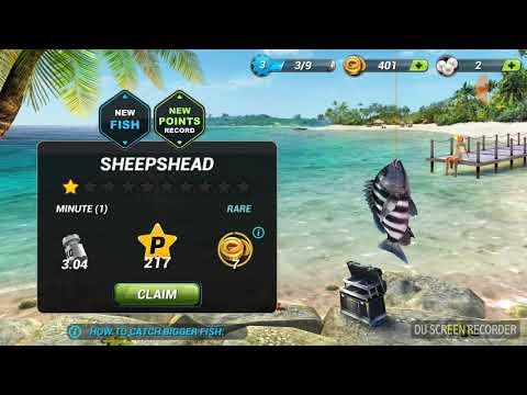 1v1 Champion!! [Fishing Clash Ep 1 pt 1] |