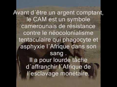 LE CAM :  La monnaie virtuelle camerounaise