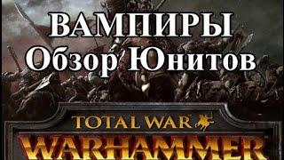 total War: Warhammer Вампиры Обзор Юнитов