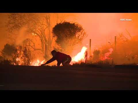 Man risks life to save wild rabbit during SoCal wildfire