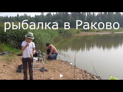 платная рыбалка в раково истринском районе