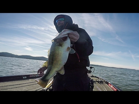 GoPro | Lake Guntersville | Day 3 Highlights