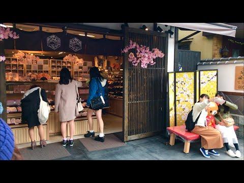 2019年3月24日(日) 京都嵐山の観光風景 ☆ Arashiyama  Kyoto ☆ 岚山   Арашиямы