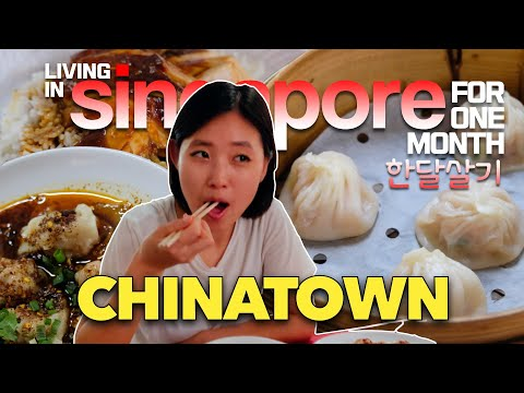 #Singapore #MICHELIN MUST TRY Food In #CHINATOWN 🇸🇬#싱가포르 #한달살기 [4k - 60fps]