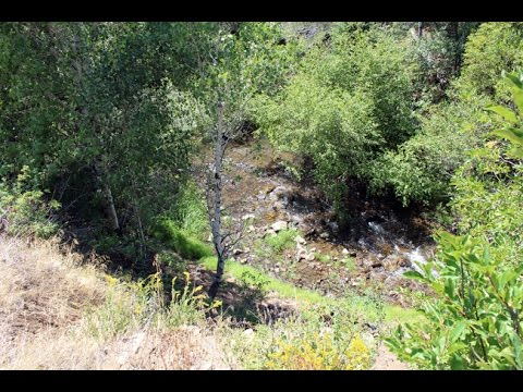 Donma Gold 20 acre Placer Mining Claim on Indian Creek in Utah