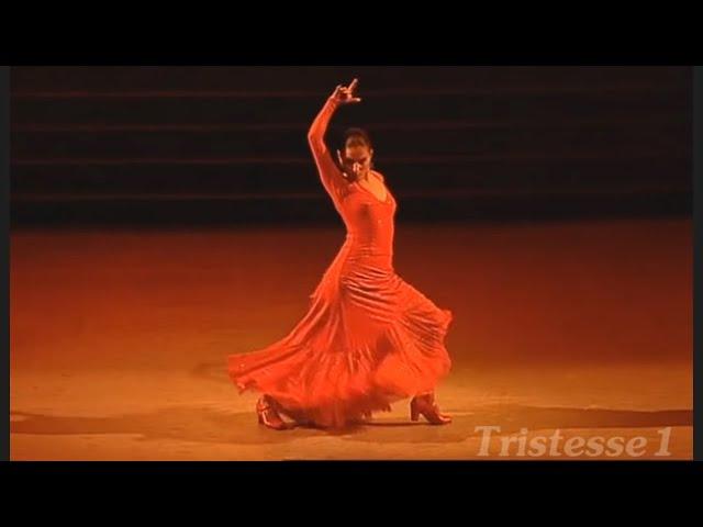 Amazing Flamenco