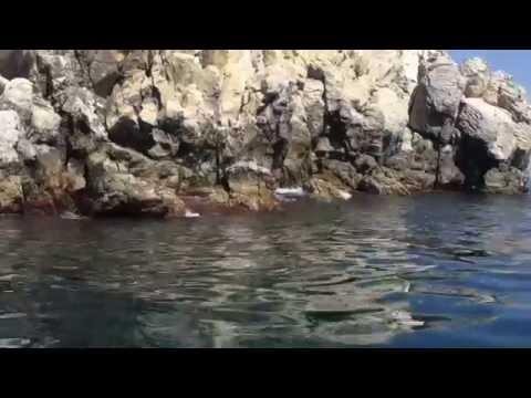 Пляжи Крыма июль 2015 Гурзуф скалы Адалары рядом Курортный Сезон