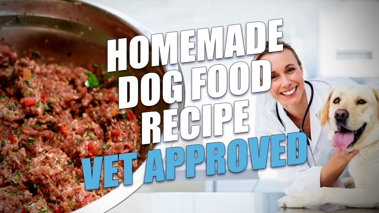 Homemade Dog Food Recipe Vet Approved Limited Ingredient Youtube