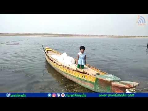 gold fish fishing || URWIFI MEDIA