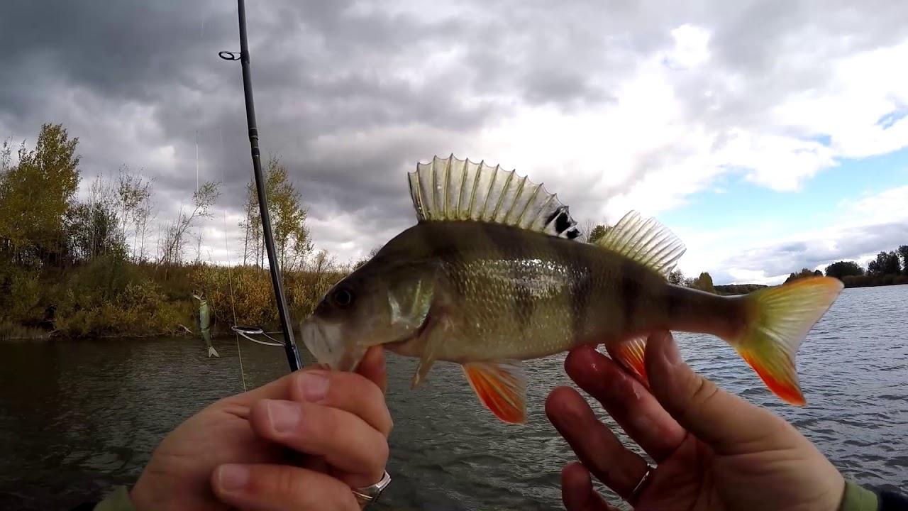 Рыбалка на р. мокша