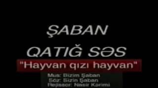 Saban - Heyvan Gizi Heyvan