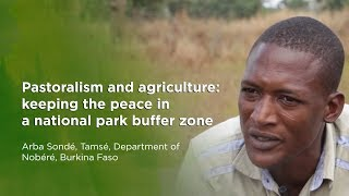 Pastoralism and agriculture: keeping the peace in a national park buffer zone