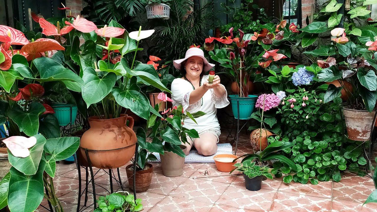 Fertilizante Orgánico para Buena Floración