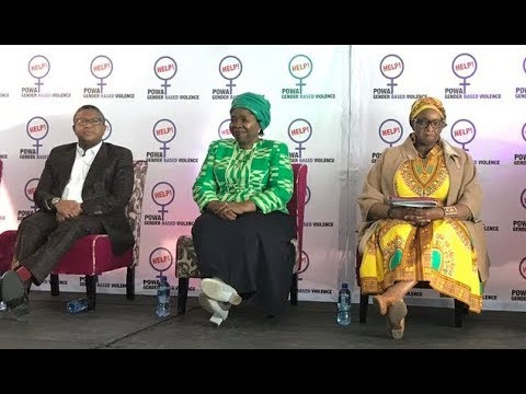 Panel discussion on Gender based violence