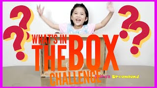 What's in the Box Challenge | Kara's Dreamland