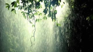 Tumsa - Lietus Dārzs
