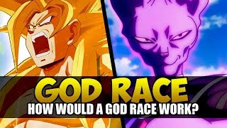Dragon Ball Xenoverse Idea: God Race! Character Creation like Beerus & Whis? (Discussion)