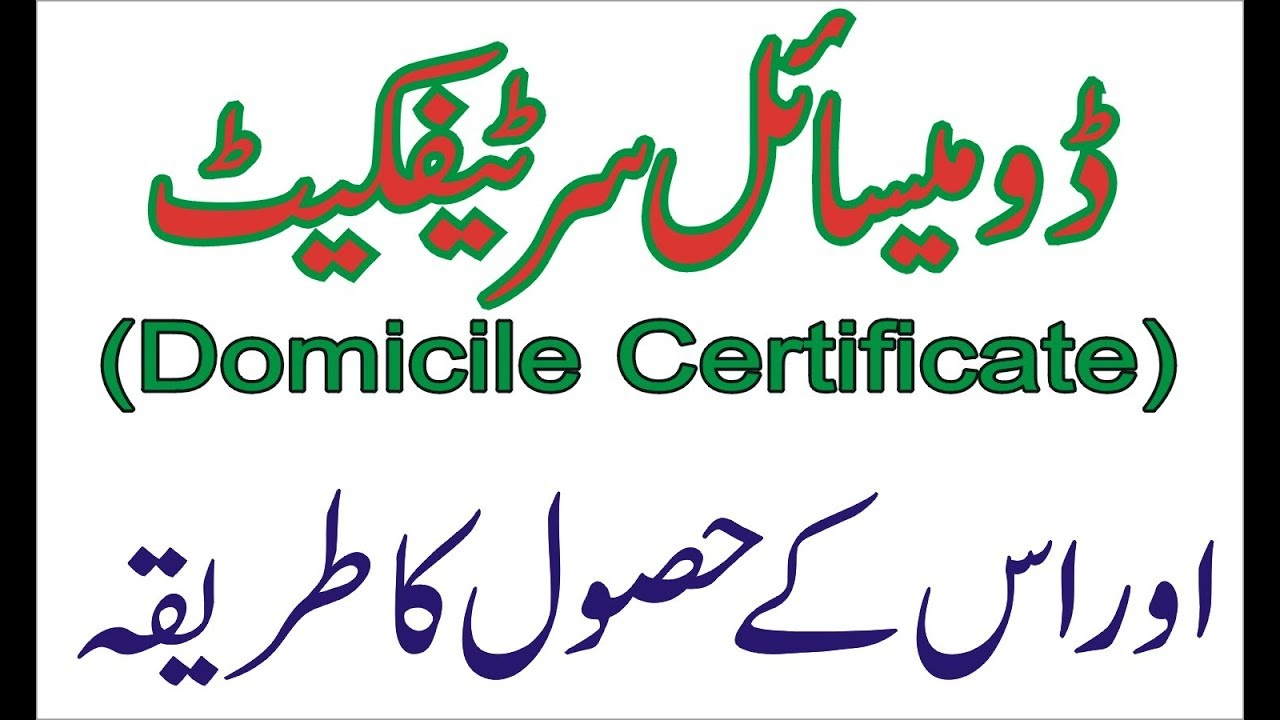 What Is Domicile Certificate And Procedure For Obtaining It