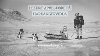 LEKENT APRIL-FØRE PÅ HARDANGERVIDDA