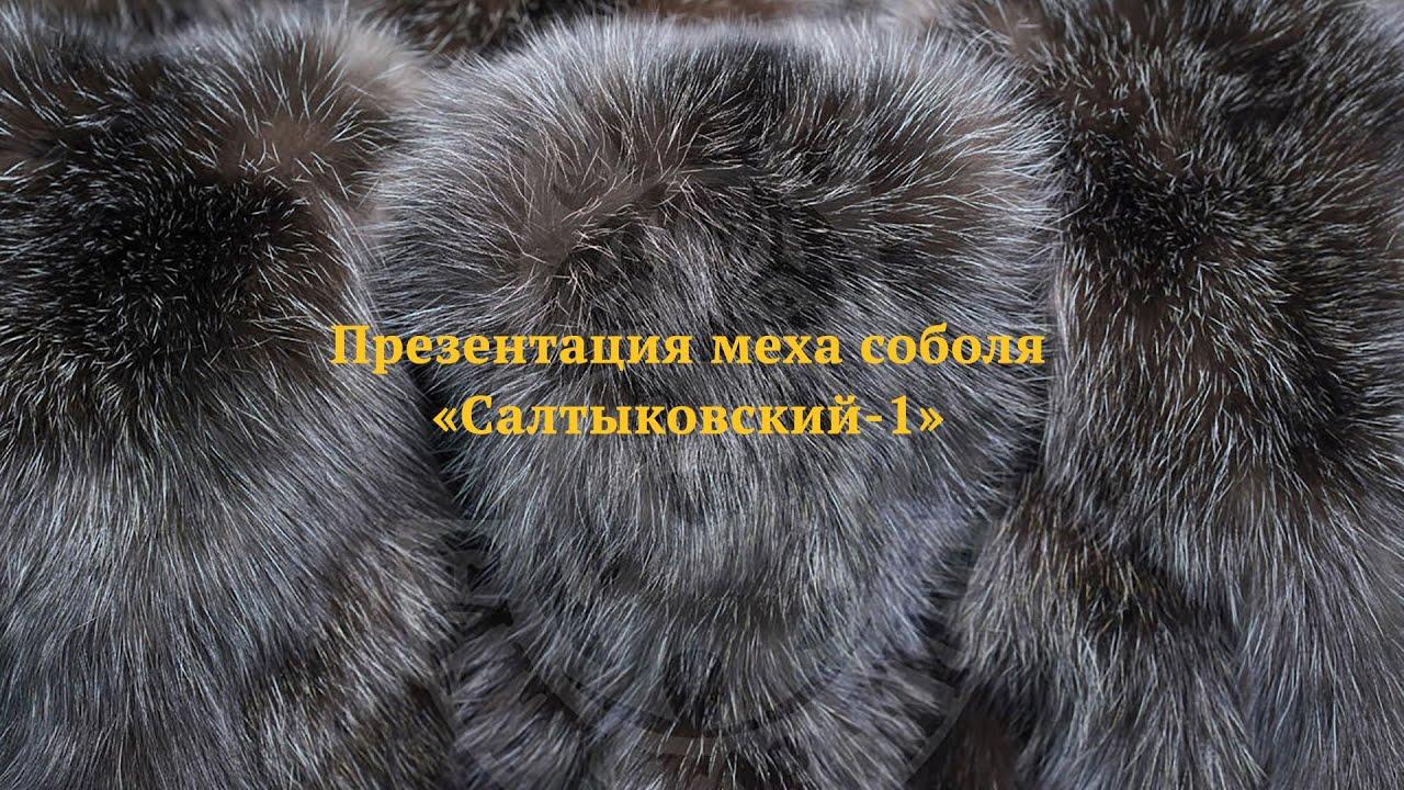 Презентация меха соболя «Салтыковский-1»