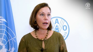 Remarks by Anne-Mari Virolainen, Minister for Foreign Trade and Development of Finland