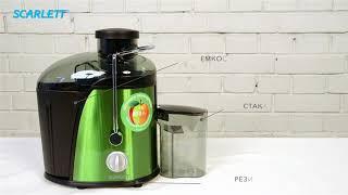 Обзор «Scarlett SC-JE50S14, Green соковыжималка, цвет зеленый»