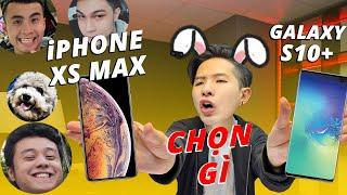 """NỐT RUỒI GALAXY S10 & TAI THỎ IPHONE XS MAX: CÁI GÌ """"KHUYẾT TẬT"""" HƠN???"""