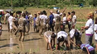 हिलो मा केटीहरु मज्जाले नाच्दै ,,,celebrate on 15 Asar 2074