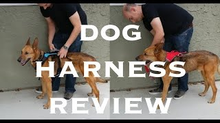 Dog Harness Review - Help 'Em Up and Ruffwear Web Master