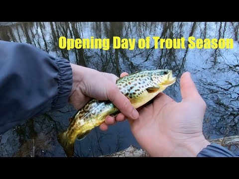 Opening Day Of Trout Season (NY)