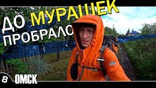 8. Омск / Дом Егора Летова / На даче / Автостоп по России