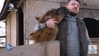 """ROventura(28.03.2020)-""""Moara de vant"""", singurul Zooparc in care animalele salbatice pot fi mangaiate"""