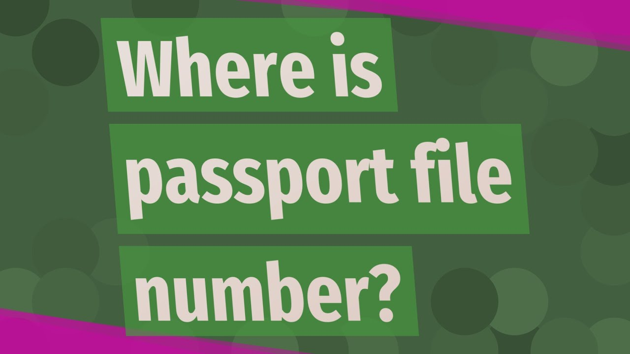 Where is passport file number?