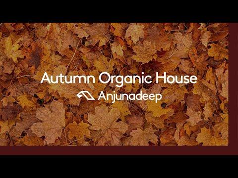 Download Anjunadeep presents: Autumn Organic House (30 Minute Chillout DJ Mix)