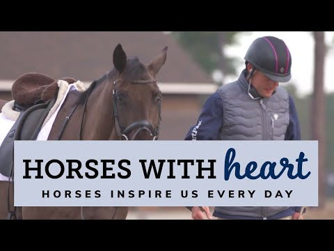 Horses With Heart