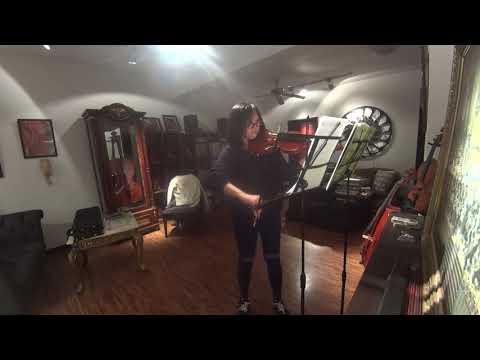 Vivaldi Concerto in a minor 3rd mvt (Carol)