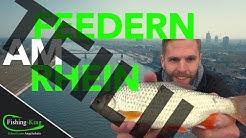 Feederangeln am Rhein auf Rotaugen, Brassen & Barben - so geht's! TEIL 2 | Fishing-King.de